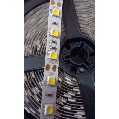 Striscia LED SMD5050 60LED/Mt 14.4W/Mt - 5 Metri